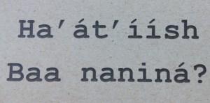 Ha'at'iish Baa nanina